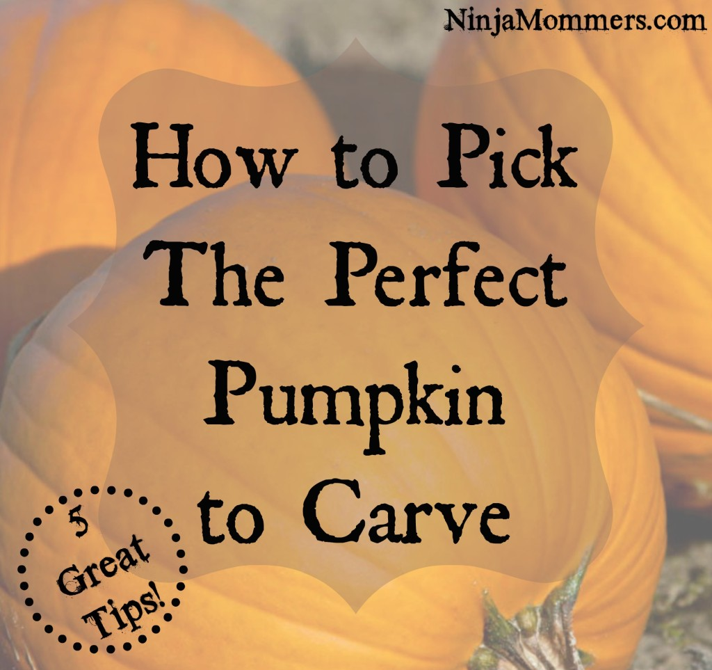 Pick the Perfect Pumpkin