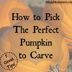 How to Pick The Perfect Pumpkin to Carve