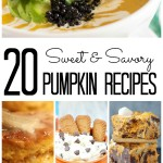 20 Sweet and Savory Pumpkin Recipes- Fall is Upon us!