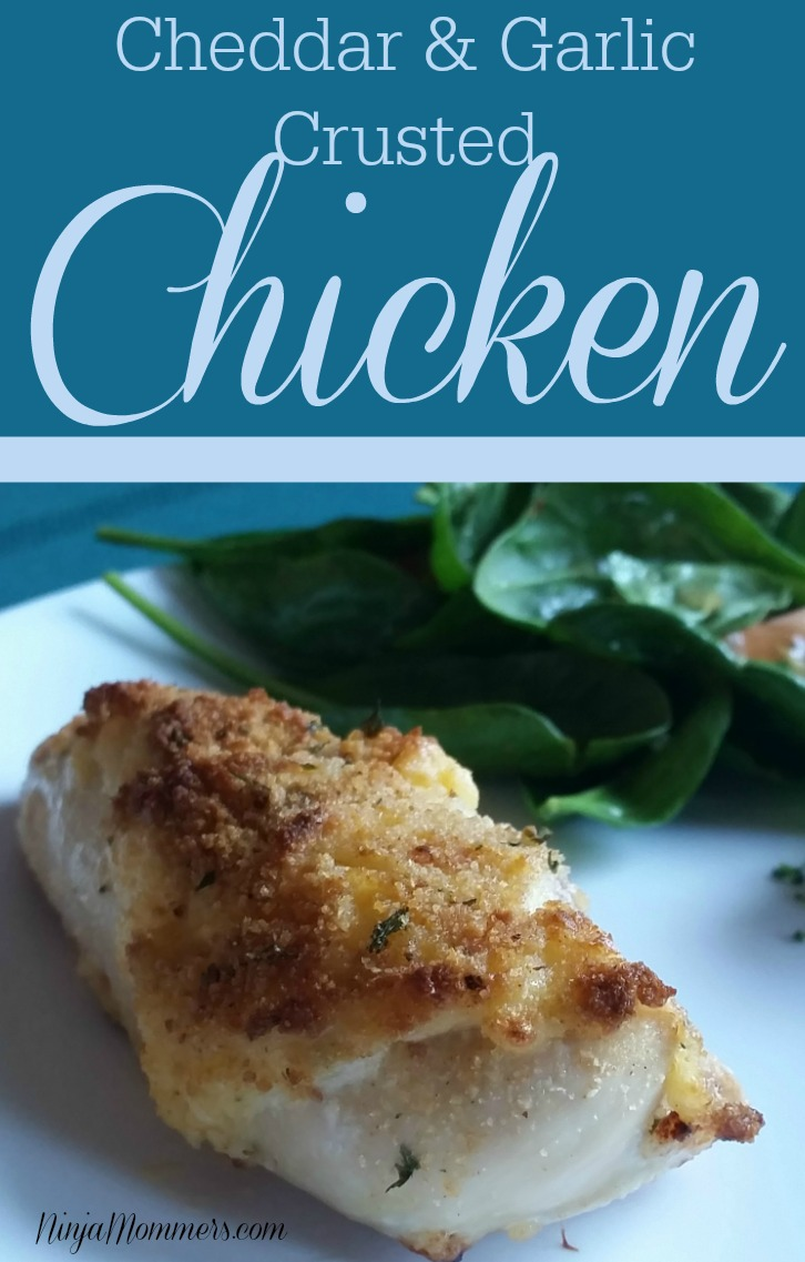 Cheddar Garlic Crusted Chicken